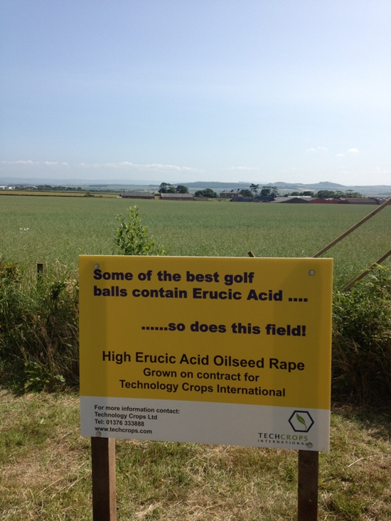 Tech Crops Ltd advert Muirfield 2013